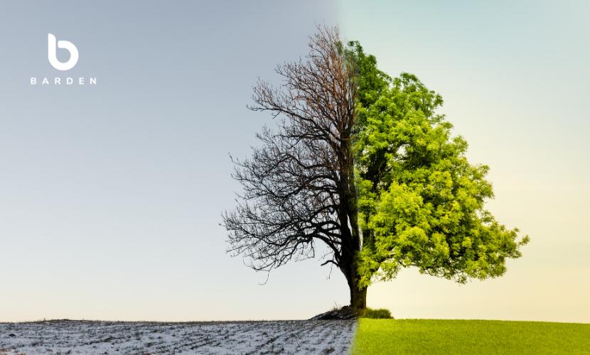 A Changing Practice Landscape